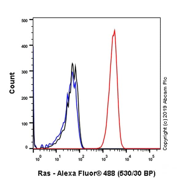 Flow Cytometry - Anti-Ras antibody [EPR3255] - BSA and Azide free (ab209974)
