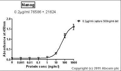 Sandwich ELISA - Anti-Nanog antibody - ChIP Grade (ab21624)