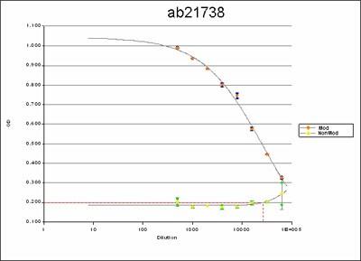 ELISA - Anti-PLK1 (phospho S137) antibody (ab21738)