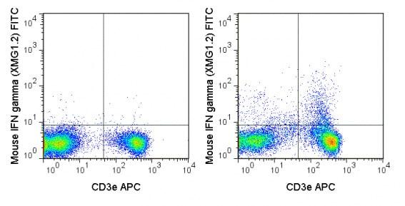 Flow Cytometry - FITC Anti-Interferon gamma antibody [XMG1.2] (ab210392)