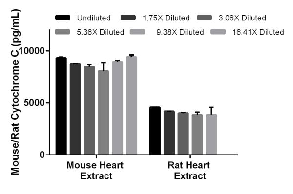 Interpolated concentrations of native Cytochrome C in mouse heart tissue extract samples based on 15 µg/mL extract load and in rat heart tissue extract samples based on 7 µg/mL extract load.