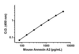 Example of mouse Annexin A2 standard curve in 1X Cell Extraction Buffer PTR.