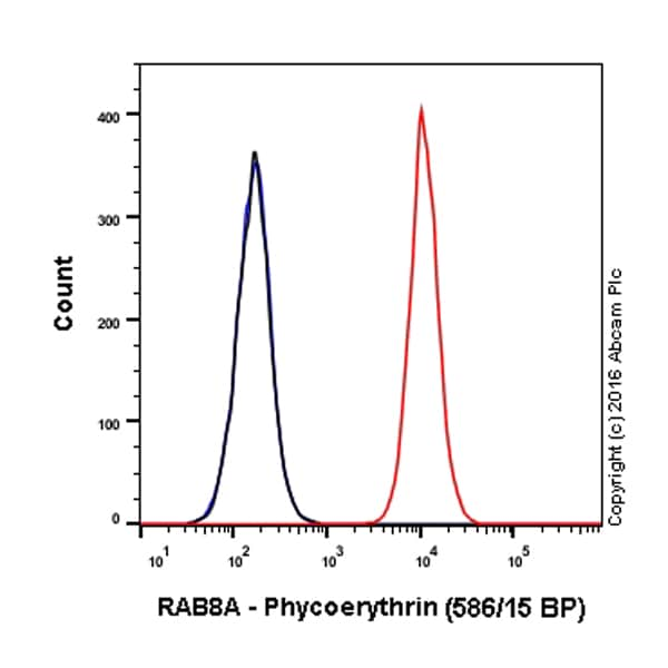 Flow Cytometry - PE Anti-RAB8A antibody [EPR14873] - C-terminal (ab210666)