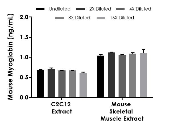 Interpolated concentrations of native Myoglobin in mouse skeletal muscle based on a 300 ng/mL extract load and C2C12 extract based on a 125 µg/mL extract load.