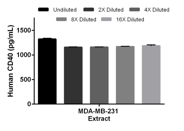 Interpolated concentrations of native CD40 in MDA-MB-231 cell extract samples based on a 25µg/mL extract load.