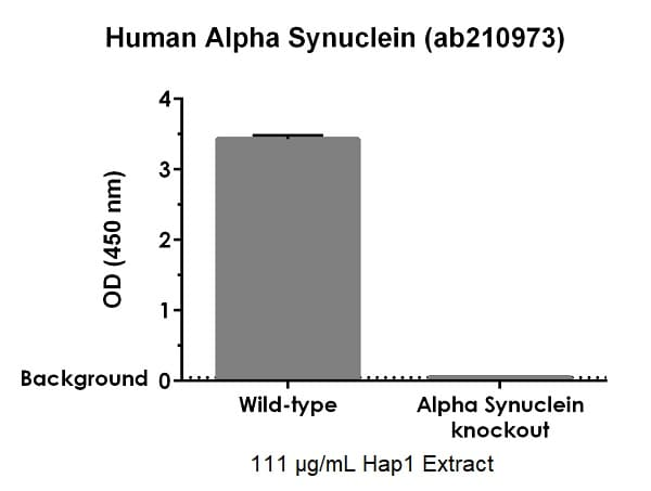ab210973 specifically detects Alpha Synuclein in human HAP1 cells.