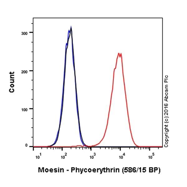 Flow Cytometry - Anti-Moesin antibody [EP1863Y] (Phycoerythrin) (ab210983)