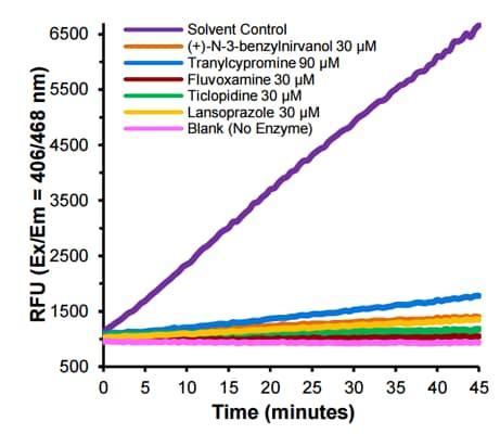 CYP2C19 Inhibitor Screening Kit (ab211073)