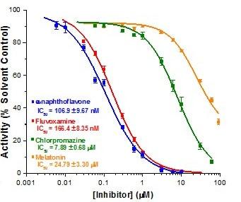 CYP1A2 Inhibitor Screening Kit (Fluorometric) (ab211075)