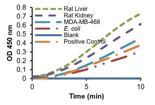 Gluconokinase Activity Assay Kit (Colorimetric) (ab211092)
