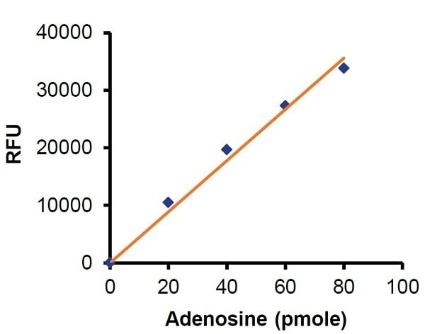 Adenosine Assay Kit (Fluorometric) (ab211094)