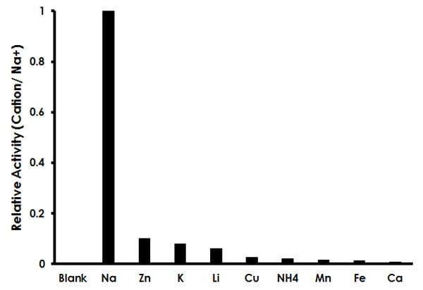 Sodium Assay Kit (Colorimetric) (ab211096)