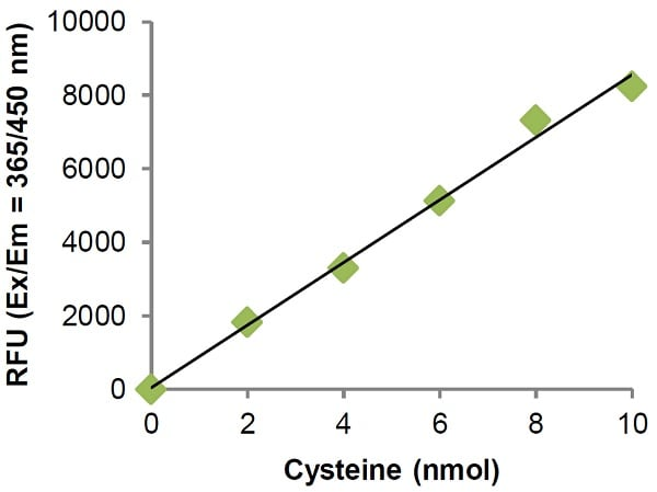Cysteine Assay Kit (Fluorometric) (ab211099)