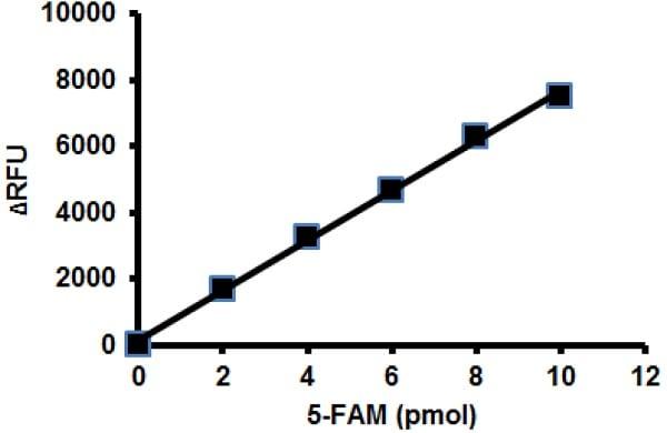 TEV Protease Activity Assay Kit (Fluorometric) (ab211109)
