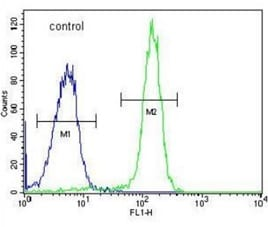 Flow Cytometry - Anti-FAM40A antibody (ab211303)