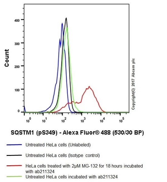 Flow Cytometry - Anti-SQSTM1 / p62 (phospho S349) antibody [EPR20451] (ab211324)