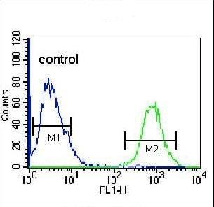 Flow Cytometry - Anti-OIF antibody - C-terminal (ab211456)
