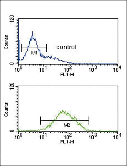 Flow Cytometry - Anti-ANKH antibody - C-terminal (ab211460)