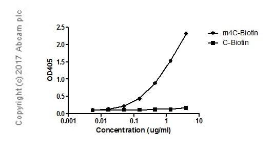ELISA - Anti-N4-methylcytidine (m4C) antibody [EPR -19850-108] (ab211494)