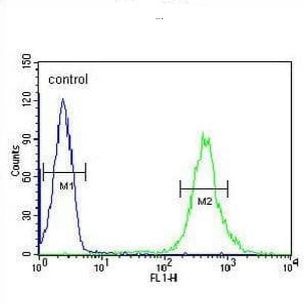 Flow Cytometry - Anti-CRP-1 antibody - C-terminal (ab211631)