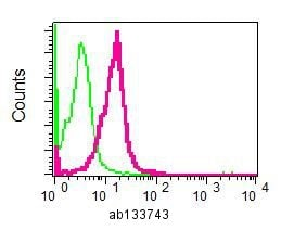 Flow Cytometry - Anti-CTP synthase/CTPS antibody [EPR8086(B)] - BSA and Azide free (ab211639)