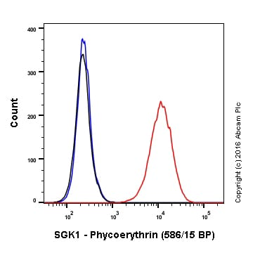 Flow Cytometry - PE Anti-SGK1 antibody [Y238] (ab212093)