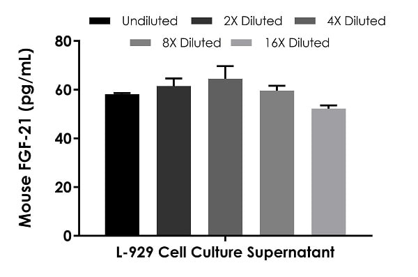 Interpolated concentrations of native FGF-21 in untreated L-929 cell culture supernatant samples.
