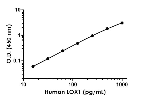 Example of human LOX1 standard curve in Sample Diluent NS.