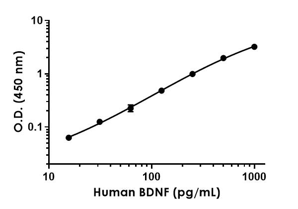 Example of human BDNF standard curve.