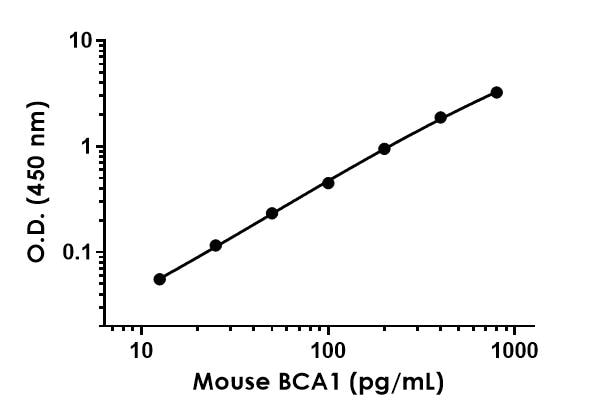 Example of mouse BCA1 standard curve.