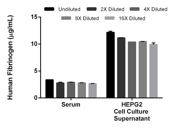 Interpolated concentrations of native Fibrinogen in human serum and cell culture supernatant samples.