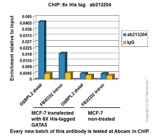ChIP - Anti-6X His tag® antibody [EPR20547] - ChIP Grade (ab213204)
