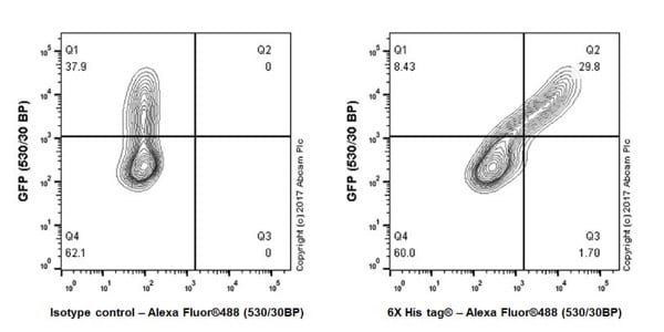 Flow Cytometry - Anti-6X His tag® antibody [EPR20547] - ChIP Grade (ab213204)