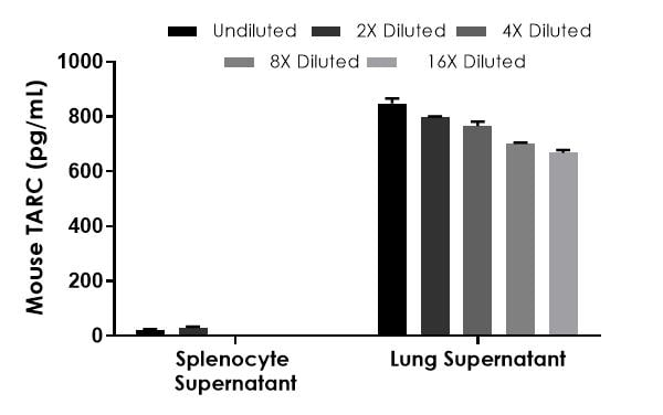 Interpolated concentrations of native TARC in mouse splenocyte and lung supernatant samples.