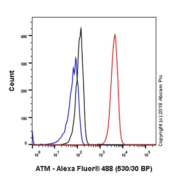 Flow Cytometry - Anti-ATM antibody [SP224] - BSA and Azide free (ab213522)