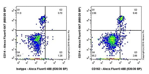 Flow Cytometry - Anti-CD163 antibody [EPR19518] - BSA and Azide free (ab213612)
