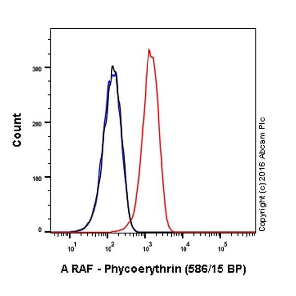 Flow Cytometry - Anti-A RAF antibody [EPR16208] (Phycoerythrin) (ab213669)
