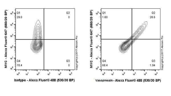 Flow Cytometry (Intracellular) - Anti-Vasopressin antibody [EPR20602] (ab213708)