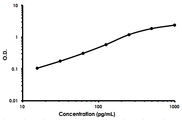 Human Flt3 ligand / Flt3L ELISA Kit (ab213780) Standard Curve