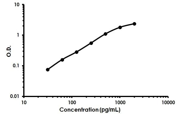 Human Granulysin ELISA Kit (ab213787) Standard Curve