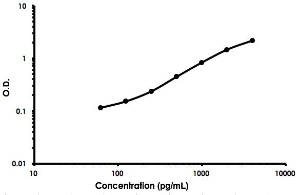 Human MFGE8 ELISA Kit (Lactadherin) (ab213810) Standard Curve