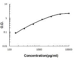 Rat TIMP-2 ELISA Kit (ab213923) Standard Curve.