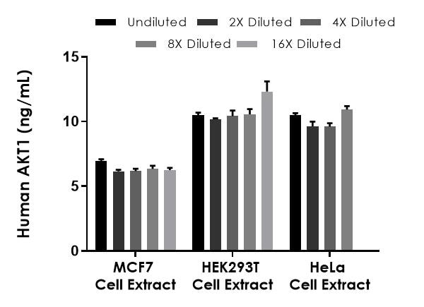 Interpolated concentrations of native AKT1 in human MCF7, HEK 293T, and HeLa cell extract samples based on 75 µg/mL, 500 µg/mL, and 250 µg/mL extract loads, respectively.