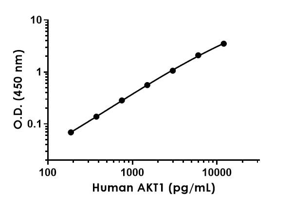 Example of human AKT1 standard curve.