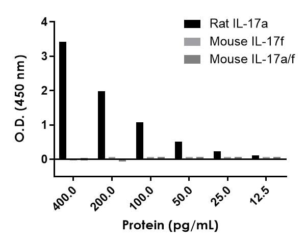 Serial dilutions of recombinant rat IL-17a homodimer, recombinant mouse IL-17f homodimer and recombinant mouse IL-17a/f heterodimer were measured with this kit.
