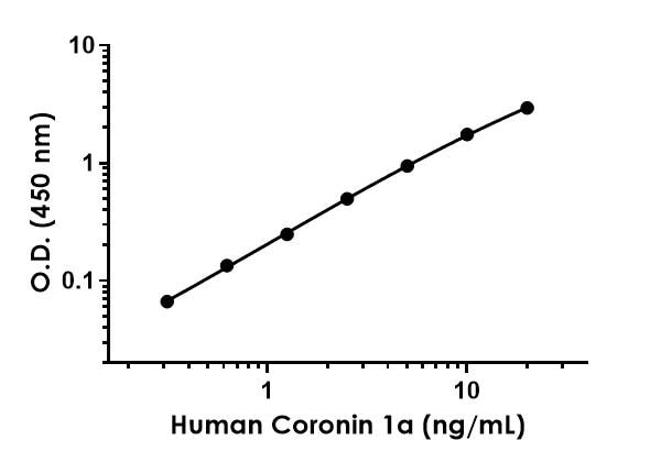 Example of Human Coronin 1a standard curve in 1X Cell Extraction Buffer PTR.
