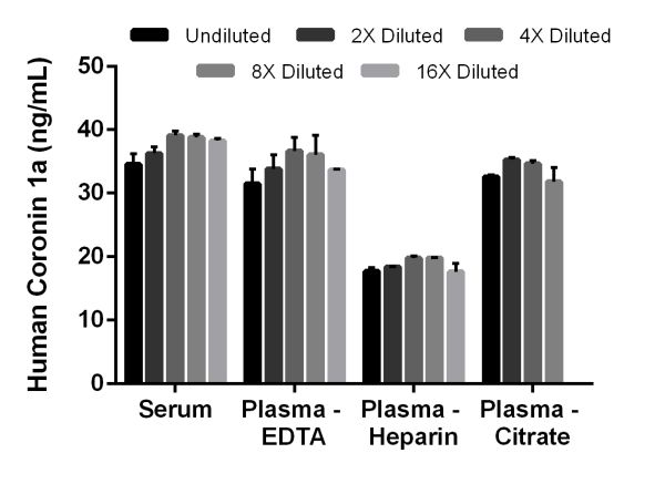 Interpolated concentrations of native Coronin 1a in human serum and plasma samples.