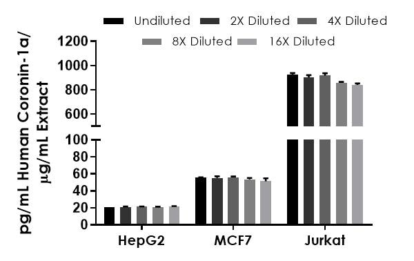 Interpolated concentrations of native Coronin 1a in human HEPG2, MCF7, and Jurkat cell extract samples and samples based on a 400 µg/mL, 200 µg/mL, and 8 µg/mL extract load respectively