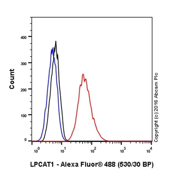 Flow Cytometry - Anti-LPCAT1 antibody [EPR19882] (ab214034)