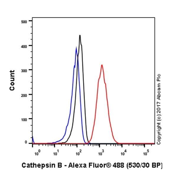 Flow Cytometry - Anti-Cathepsin B antibody [EPR21033] (ab214428)